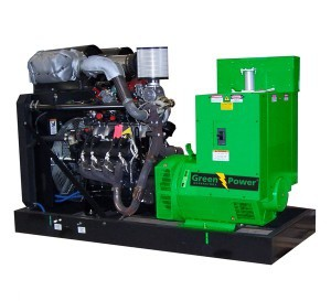 Natural Gas Generator 25kVA 20kW, Manual or Automatic Starting