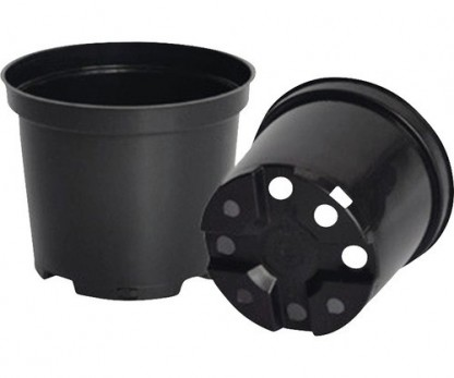 Container pots rounded Ø10cm to 56cm