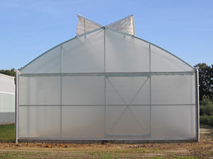 Greenhouse SCANDI  ®  800